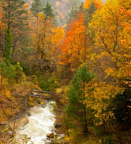 Autumn colours in Ordesa on Aragon Active Holidays Pyrenees Weather