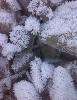 Winter frost crytals on Aragon Active Holidays Pyrenees Weather